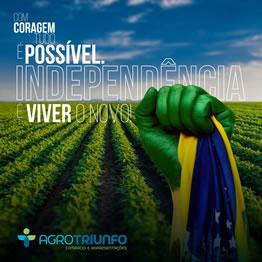 Banner Independência Agrotriunfo
