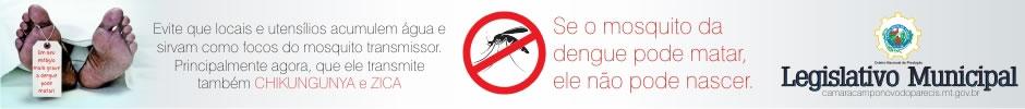 Banner Câmara Dengue 2016