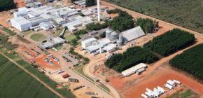 BRF investirá mais de R$ 100 milhões em Nova Mutum