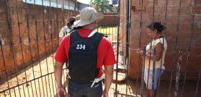 Casos de dengue aumentam em Mato Grosso