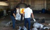 Polícia Civil incinera cerca de 200 quilos de drogas em Tangará