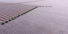 Força-tarefa reúne quase 30 colheitadeiras na colheita do algodão em Sapezal
