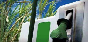 Usinas com poucos recursos priorizam produção de etanol