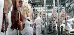 Frigorífico de Paranatinga deve ser habilitado para exportar carne para os EUA
