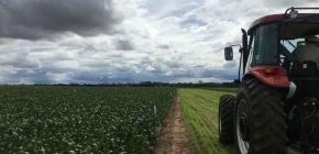 Novo centro de pesquisas em Campo Novo do Parecis refletirá em produtividade para agricultores